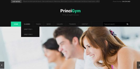 Princy Gym Homepage PSD