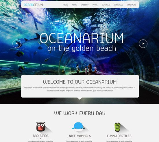 PSD Oceanarium by Dalechuk Inna